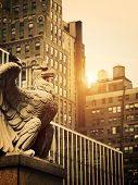 Stone Eagle In Manhattan
