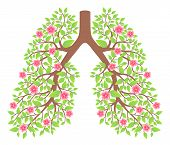 pic of exhale  - lungs healthy with flowers on a white background - JPG