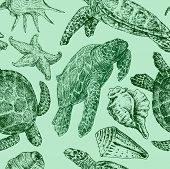 Background With A Sea Turtles.eps