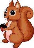 Cute cartoon Squirrel holding a corn
