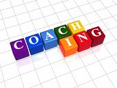 Coaching In Color Cubes