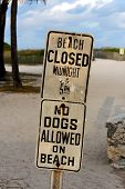 Beach Closed And No Dogs Allowed