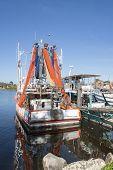 Prawn boats in port.