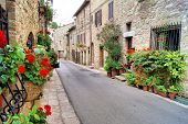 image of quaint  - Flower lined medieval street in Assisi - JPG