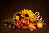 image of horn plenty  - Cornucopia with pumpkins on brown background - JPG