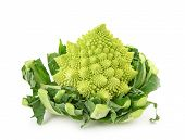 picture of romanesco  - Romanesco broccoli isolated on white background - JPG