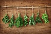 stock photo of oregano  - Fresh herbs hanging over wooden background - JPG