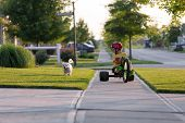 Walking The Dog With Tricycle In The Neighborhood