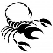 picture of scorpio  - Illustration of Black Scorpio Zodiac Star Sign isolated on a white background - JPG