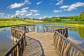 Lake In Green Nature Wooden Boardwalk