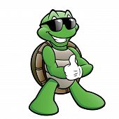 stock photo of carapace  - Vector illustration of a turtle wearing sunglasses - JPG