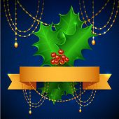 Christmas Holly Berry With Gradient Mesh, Vector Illustration