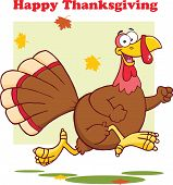 Happy Thanksgiving Greeting With Turkey Bird Running