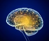 Brain impulses. Thinking prosess