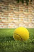 Yellow Tennis Ball On Grass, With A Brick Wall In The Background And Dof Effect.