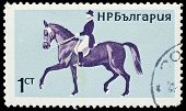 Bulgaria Stamp With Horseback Riding