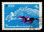 Ussr Stamp Thoroughbred Race Horse