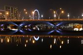 Esplanade Bridge, Theater And Singapore Flyer At Night
