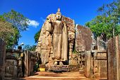 Big statue of Buddha - Awukana , Sri lanka