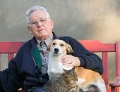 stock photo of lap  - Senior man with dog and cat on his lap on bench