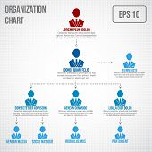 foto of hierarchy  - Organizational chart infographic business hierarchy boss to employee structure vector illustration - JPG