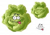 Green funny cabbage vegetable