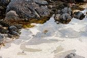 foto of galway  - Clear Atlantic ocean water in Co - JPG