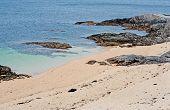 Coral Beach - Tra An Doilin