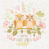 owls super cute
