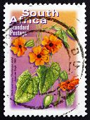 Postage Stamp South Africa 2003 Black-eyed Susy, Flowering Plant