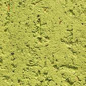 Guacamole Green Obsolete Wall