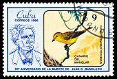 Vintage  Postage Stamp.  Dendroika Petechia.