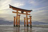 Looming vermilion tori (Shinto gate) Miyajima Island