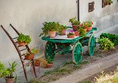 Pots with flowers on top of green wooden cart as part of rural garden decoration in Piedmont, Italy.