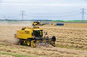 Dutch Farmers With Agricultural Machinery Harvesting A Wheat Field