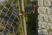 stock photo of chain link fence  - A locked chain link fence guarding and abandoned building.