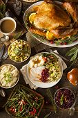 foto of thanksgiving  - Homemade Thanksgiving Turkey on a Plate with Stuffing and Potatoes - JPG