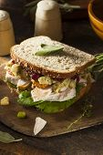 picture of turkey dinner  - Homemade Leftover Thanksgiving Dinner Turkey Sandwich with Cranberries and Stuffing - JPG