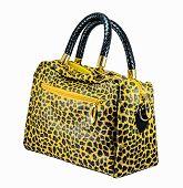 Leather Leopard  Handbag
