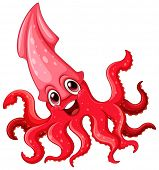 Illustration of a close up squid