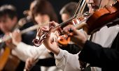stock photo of orchestra  - Symphony orchestra first violin section performing on dark background - JPG