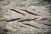 Old Wood Textured