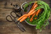 Fresh Carrots With Vintage Kitchen Utensils On Rustic Wooden Background
