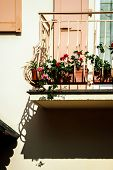Beautiful Decoration Elements Of Alsace Streets