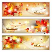 Autumn Banners with Foliage - EPS 10
