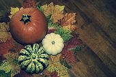 Rustic Autumn Concept