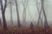 stock photo of spooky  - Spooky cemetery in the forest - JPG