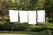 White Towels Drying On Washing Line