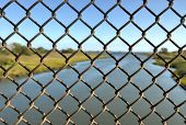 Spring Creek, View Through Fence