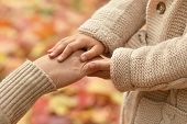 Hands against  leaves